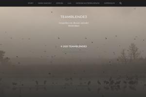 Neu im Web: TeamBlende 3